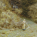 In the Primrose Wood Poster by Helen Allingham