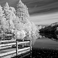 Infrared Glencoe Lochan Poster by Billy Currie Photography
