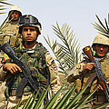 Iraqi Soldiers Conduct A Foot Patrol Print by Stocktrek Images