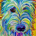 Irish Wolfhound - Angus Poster by Alicia VanNoy Call