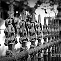 Iron Fence 2 Print by Perry Webster