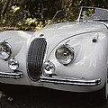 Jaguar XK120 Doing a Time Out Poster by Curt Johnson