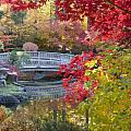 Japanese Gardens Poster by Idaho Scenic Images Linda Lantzy