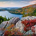 Jordan Pond Sunrise  Poster by Susan Cole Kelly
