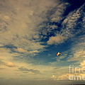 Kite at Folly Beach near Charleston SC Print by Susanne Van Hulst