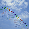 Kites Fly In A Rainbow Of Colors Print by Stephen Alvarez