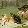 Kittens Playing Print by Ewald Honnef