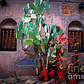 La Hacienda in Old Tuscon AZ Print by Susanne Van Hulst