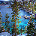 Lake Tahoe Winterscape Poster by Scott McGuire