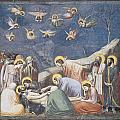Lamentation Print by Giotto Di Bondone
