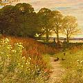 Landscape with Wild Flowers and Rabbits Print by Robert Collinson