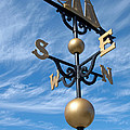 Largest Weathervane Poster by Ann Horn