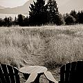 Lawn Chair View of Field Print by Darcy Michaelchuk