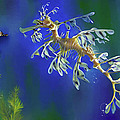 Leafy Sea Dragon Print by Thanh Thuy Nguyen