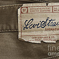 Levi Strauss Signature back patch Poster by Igor Kislev
