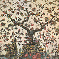 Life As A Tree 18th Century Poster by Science Source
