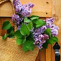 Lilacs in a straw purse Print by Sandra Cunningham