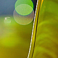 Lime Abstract Two Print by Dana Kern