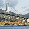 Lions Gate Bridge in autumn Print by Marlene Ford