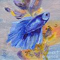 Little Blue Betta Fish Print by Brenda Thour