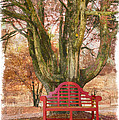Little Red Bench Poster by Debra and Dave Vanderlaan