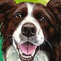 Liver and White Border Collie Print by Dottie Dracos
