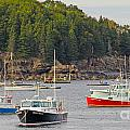 Lobster Boats in Bar Harbor Print by Jack Schultz