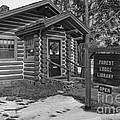 Log cabin library 11 Poster by Jim Wright