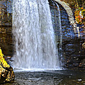 Looking Glass Falls Print by Susan Leggett