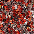 Loose Change . 8 to 10 Proportion Print by Wingsdomain Art and Photography