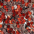 Loose Change . 8 to 12 Proportion Print by Wingsdomain Art and Photography