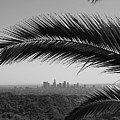 Los Angeles Skyline From Hollywood Hills Poster by Mike Shaffer