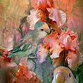 Love Among The Irises Poster by Carol Cavalaris