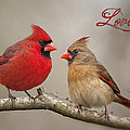 Love Poster by Bonnie Barry