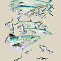 Mackerel Montage Poster by KEVIN BRANT