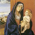 Madonna and Child Print by Giovanni Bellini