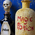 Magic Potion Poster by Garry Gay