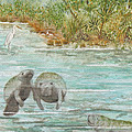 Manatee Poster by Grace Ashcraft
