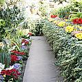 Manito Park Conservatory Poster by Carol Groenen