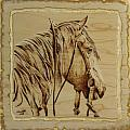 Maple Horse Poster by Chris Wulff