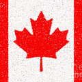 Maple Leaf abstract Poster by Cristophers Dream Artistry