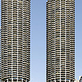 Marina City Chicago - Life in a Corn Cob Poster by Christine Till