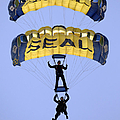 Members Of The U.s. Navy Parachute Poster by Stocktrek Images