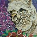 Merry Christmas Alpaca Poster by Patty Sjolin