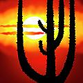 Mexico sunset Print by Michal Boubin