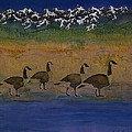 Migration series geese 2 Poster by Carolyn Doe