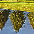 Mirroring Trees Poster by Heiko Koehrer-Wagner
