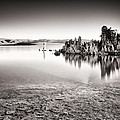 Monochrome Mono Lake Sunrise Print by Tanya Harrison