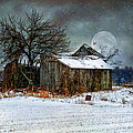 Moon Light Barn Poster by Mary Timman