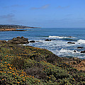 Moonstone Beach Print by Heidi Smith